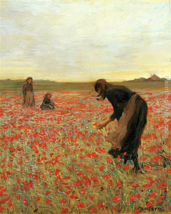Poppy flower field painting