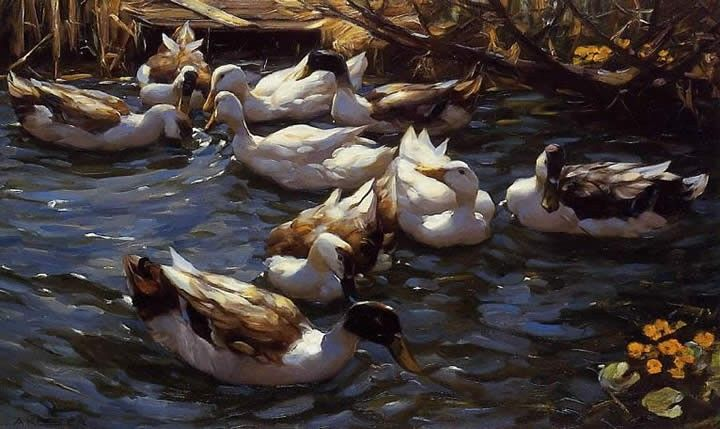 Alexander Koester Ducks in the Reeds under the Boughs