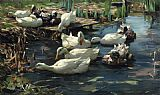 Alexander Koester Ducks in a Quiet Pool painting
