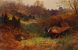 Archibald Thorburn Autumn Sunshine painting