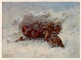 Archibald Thorburn Grouse Sheltering painting