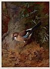 Archibald Thorburn Jay painting