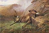 Archibald Thorburn the lost stag painting