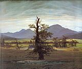 Caspar David Friedrich Landscape with Solitary Tree painting