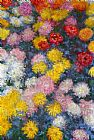 Claude Monet Chrysanthemums 4 painting