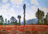 red poppies Canvas Prints - Field of Poppies