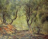 olive grove Paintings - The Olive Tree Wood in the Moreno Garden
