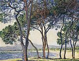Claude Monet Trees by the Seashore at Antibes painting