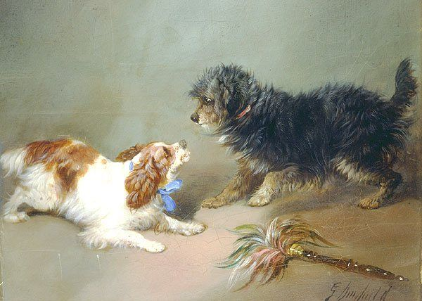 George Armfield King Charles Spaniel & Terrier