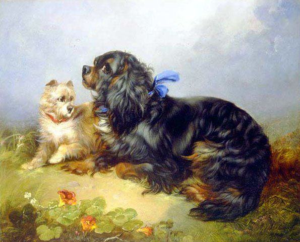 George Armfield King Charles Spaniel and a Terrier