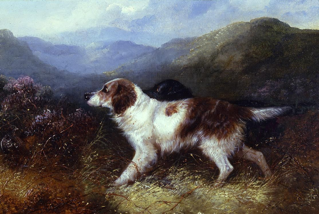 George Armfield Two Setters in a Landscape