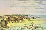 George Catlin Stalking Buffalo painting