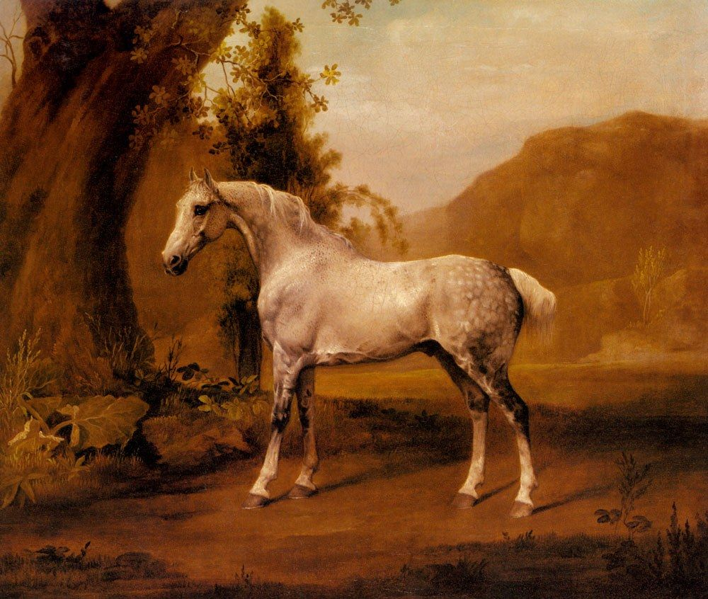 George Stubbs A Grey Stallion In A Landscape
