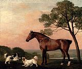 George Stubbs A Bay Hunter With Two Spaniels painting