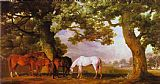 George Stubbs Mares and Foals in a Wooded Landscape painting