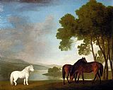 a grey horse Canvas Prints - Two Bay Mares And A Grey Pony In A Landscape