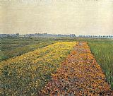 Gustave Caillebotte The Yellow Fields at Gennevilliers painting