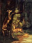 Gustave Courbet Male and Female Deer in the Woods painting