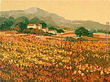 Hazel Barker Afternoon Sun Languedoc painting