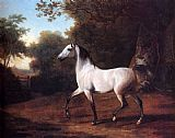Jacques Laurent Agasse A Grey Arab Stallion In A Wooded Landscape painting