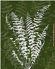James Burghardt Jewel Ferns I painting