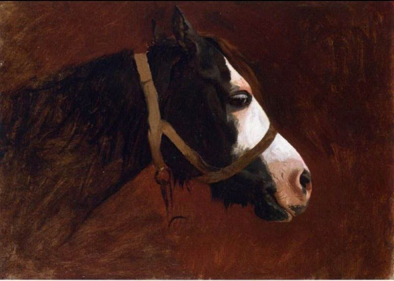 Jean-Leon Gerome Profile of a Horse