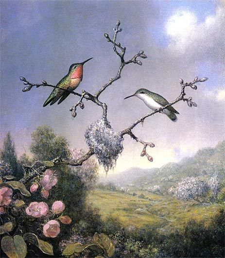 Martin Johnson Heade Hummingbirds and Apple Blossoms
