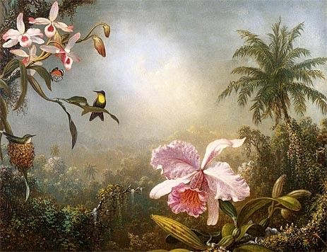 Martin Johnson Heade Orchids Nesting Hummingbirds and a Butterfly