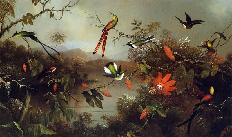 Martin Johnson Heade Tropical Landscape with Ten Hummingbirds