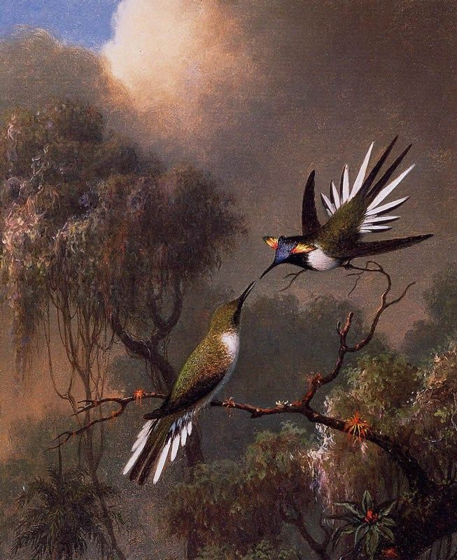 Martin Johnson Heade Two Sun Gems on a Branch