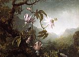 Martin Johnson Heade Hummingbird Perched near Passion Flowers painting