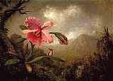 Martin Johnson Heade Orchid and Hummingbird near a Mountain Waterfall painting