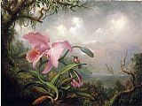 Martin Johnson Heade Orchid and Hummingbird painting