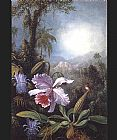 Martin Johnson Heade Orchids Passion Flowers and Hummingbird painting