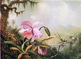 Martin Johnson Heade Orchids and Hummingbirds near a Mountain Lake painting