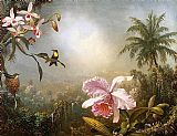Martin Johnson Heade Orchids, Nesting Hummingbirds and a Butterfly painting