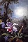 Martin Johnson Heade Orchids, Passion Flowers and Hummingbird painting