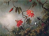 Martin Johnson Heade Passion Flowers and Hummingbirds painting