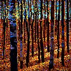 Michael O'Toole Twilight Time Among Aspens painting