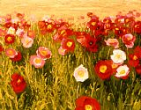 red poppies Canvas Prints - Poppies Make Me Happy