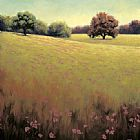 Unknown Artist James Wiens Poppy Fields II painting