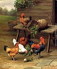 Unknown Artist Chickens art painting