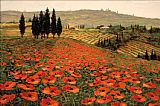 Unknown Artist Hills of Tuscany I painting