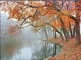 Unknown Artist Mike Jones Autumn Reflections painting