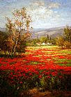 Poppies paintings - Poppy Field Splendid Pathway by Unknown Artist
