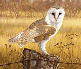 Unknown Artist owl painting
