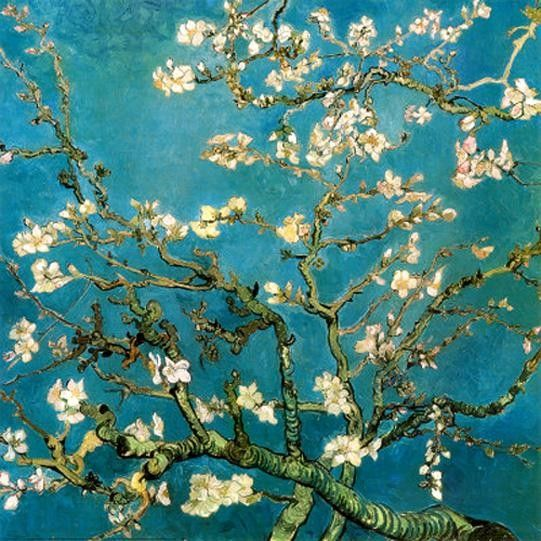 Vincent van Gogh Almond Branches in Bloom 1