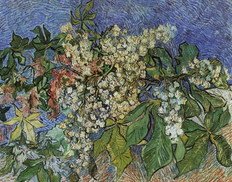 Vincent van Gogh Blossoming Chestnut Branches