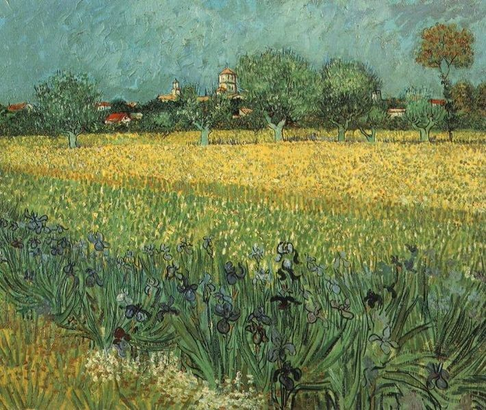 Vincent van Gogh View of Arles with Irises