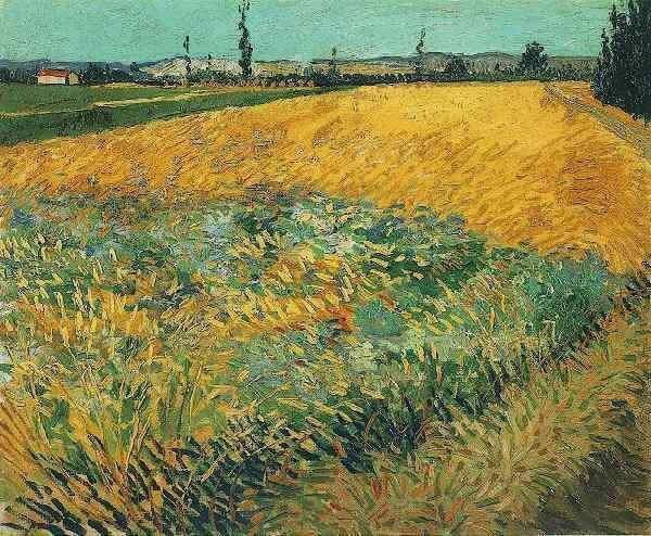 Vincent van Gogh Wheat Field with the Alpilles Foothills in the Background